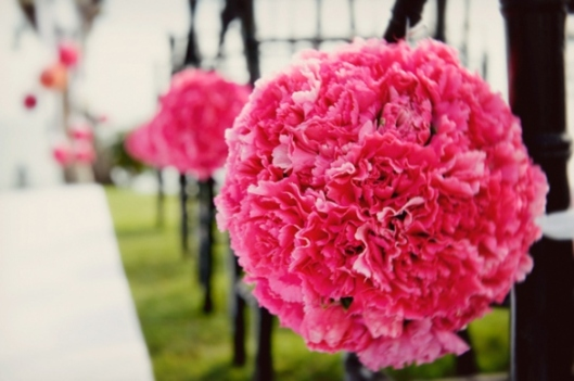 pink-carnation-pomanders-wedding-ceremony-decor